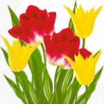 Салфетки 33х33 Марго Тюльпаны