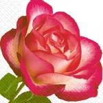 Салфетки 24х24 3сл. 20шт Марго роза