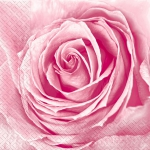 Салфетки 33х33 бутон розы Марго 20шт